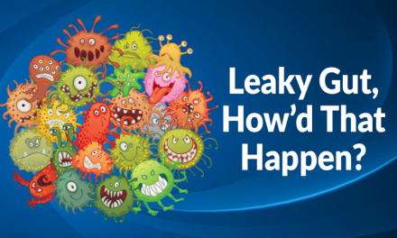 Leaky Gut, How'd That Happen?
